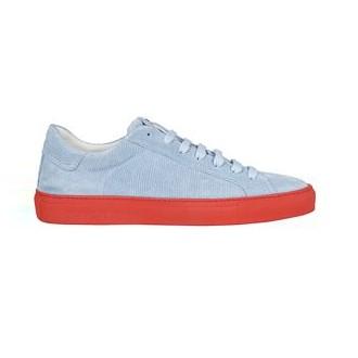 Gecko sneakers