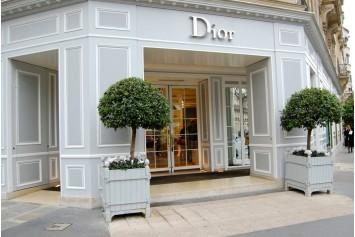 Dior Parigi